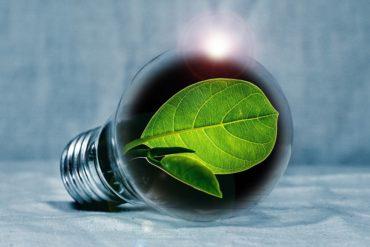 Valorisation des cendres issues de la biomasse