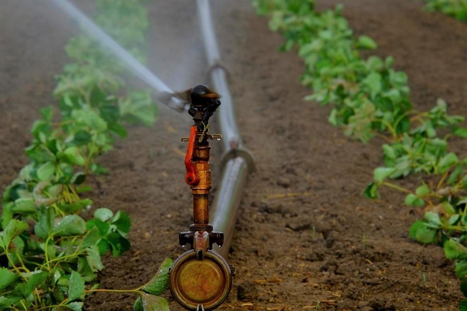 gicleurs d'eau - irrigation agricole
