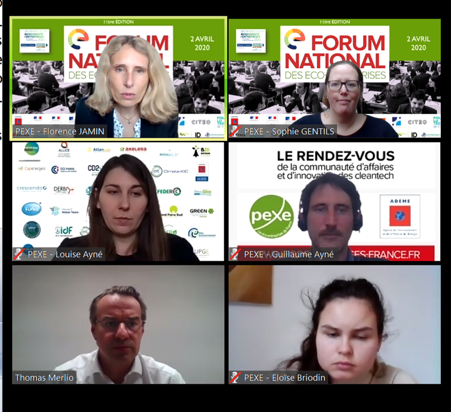 Forum national Pexe en visio